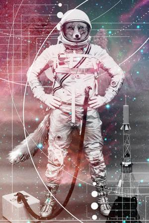 Astronaut Fox