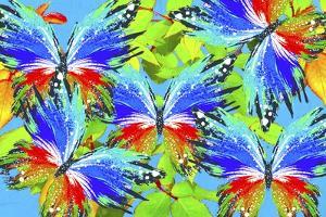 Butterflies 44 by Ata Alishahi