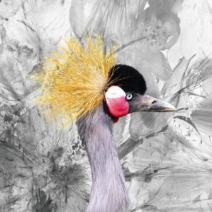 Crest Bird by Ata Alishahi