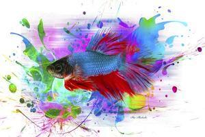 Fish and colors by Ata Alishahi