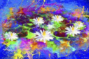 Garden Of Colors by Ata Alishahi