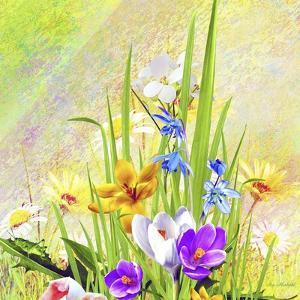 Garden Of Flowers M4 by Ata Alishahi