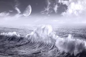 Ocean Wave by Ata Alishahi