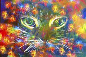 The Cat Face by Ata Alishahi