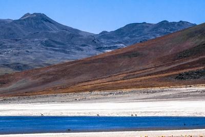 https://imgc.allpostersimages.com/img/posters/atacama-desert-chile-and-bolivia_u-L-Q10VFGV0.jpg?p=0