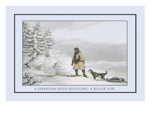 Siberian Exile Prepares to Shoot a Black Fox by Atkinson