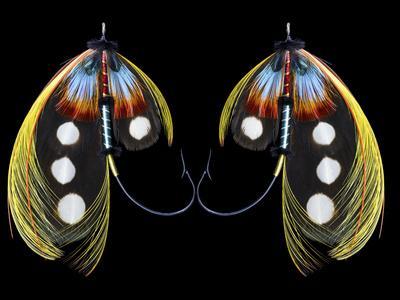 https://imgc.allpostersimages.com/img/posters/atlantic-salmon-fly-designs-western-illusion_u-L-Q1H2F8T0.jpg?artPerspective=n