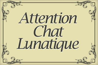 Attention Chat Lunatique French Crazy Cat Plastic Sign