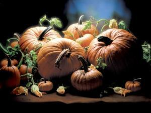 Pumpkins by ATU Studios