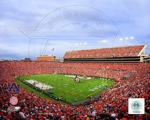 Auburn Tigers Photo
