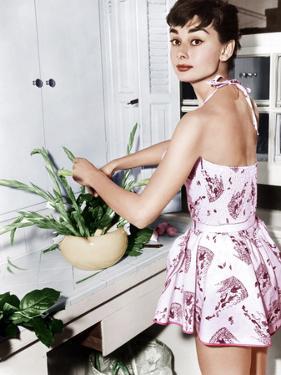 Audrey Hepburn Creates a Flower Arrangement, Ca. Early 1950s