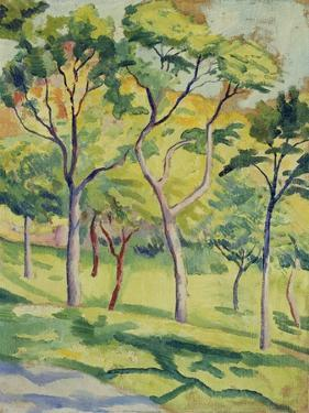 A Meadow with Trees, 1910 by August Macke
