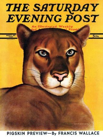 """""""Mountain Lions,"""" Saturday Evening Post Cover, September 25, 1937"""