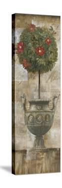 Grecian Bloom I by Augustine