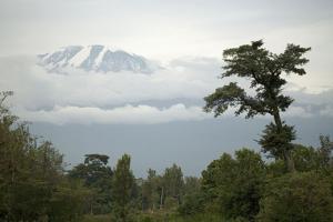 Mount Kilimanjaro Snow Melting on Summit by Augusto Leandro Stanzani
