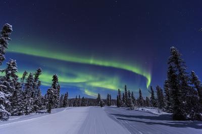 https://imgc.allpostersimages.com/img/posters/aurora-borealis-northern-lights-near-fairbanks-alaska_u-L-Q1D0AIF0.jpg?p=0