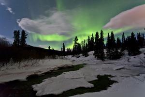 Aurora Borealis over Creek, Yukon, Canada