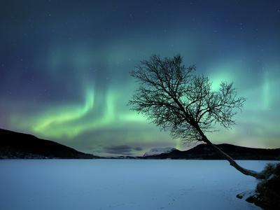 https://imgc.allpostersimages.com/img/posters/aurora-borealis-over-sandvannet-lake-in-troms-county-norway_u-L-PERBU50.jpg?p=0