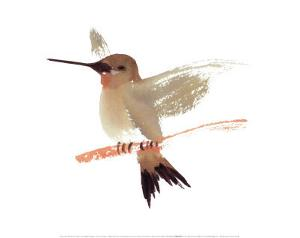 Hummingbird by Aurore De La Morinerie