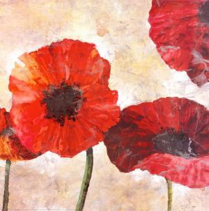 Poppies by Austen