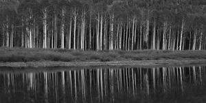 Black And White Panoramic Shot Of Willow Lake, Big Cottonwood Canyon, Utah by Austin Cronnelly