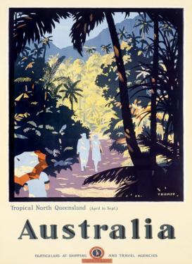 Australia Queensland Rain Forest