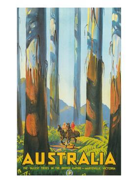 Australia Travel Poster, Gum Trees