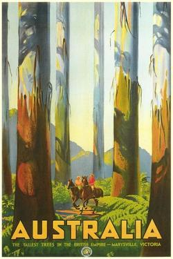Australia Travel Poster, Trees
