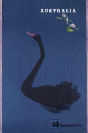 https://imgc.allpostersimages.com/img/posters/australian-travel-board-travel-poster-black-swann-ca-1950s_u-L-PNKK8H0.jpg?artPerspective=n