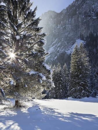 https://imgc.allpostersimages.com/img/posters/austria-styria-rotmoos-village-winter-wood_u-L-Q11YLEK0.jpg?p=0