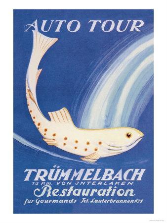 https://imgc.allpostersimages.com/img/posters/auto-tour-trummelbach_u-L-P2CVYI0.jpg?artPerspective=n