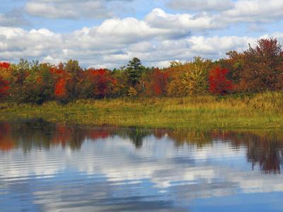 https://imgc.allpostersimages.com/img/posters/autumn-at-sebago-lake-state-park-raymond-maine-usa_u-L-PHAISL0.jpg?p=0