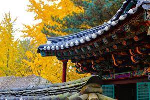 Autumn color at Namsangol folk village, Seoul, South Korea