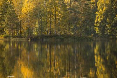 https://imgc.allpostersimages.com/img/posters/autumn-color-reflections-on-the-lake-surface_u-L-Q1EXVW70.jpg?artPerspective=n