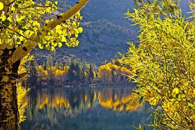 https://imgc.allpostersimages.com/img/posters/autumn-colors-of-the-june-lake-loop-california-usa_u-L-PN6UPG0.jpg?p=0