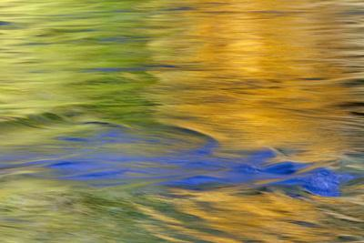 https://imgc.allpostersimages.com/img/posters/autumn-colors-reflect-in-quinault-river-quinault-washington-usa_u-L-PN73HU0.jpg?p=0