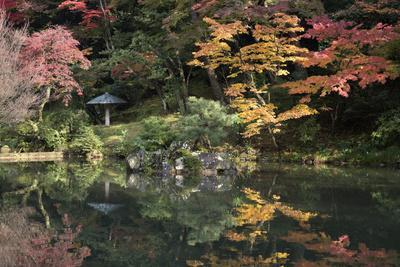 https://imgc.allpostersimages.com/img/posters/autumn-colours-reflected-in-hisagoike-pond_u-L-PWFJSF0.jpg?artPerspective=n