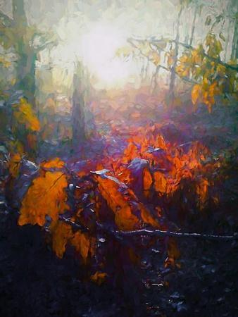 https://imgc.allpostersimages.com/img/posters/autumn-forest-2018_u-L-Q1GTWYN0.jpg?artPerspective=n