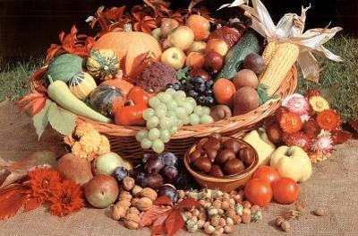 Autumn Fruit (Still Life) Art Poster Print