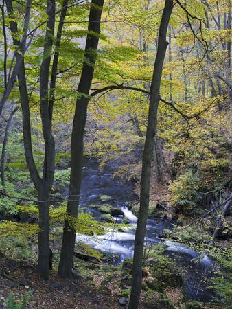 https://imgc.allpostersimages.com/img/posters/autumn-in-the-bodetal-harz-national-park-saxony-anhalt-germany_u-L-Q1EY0EP0.jpg?artPerspective=n