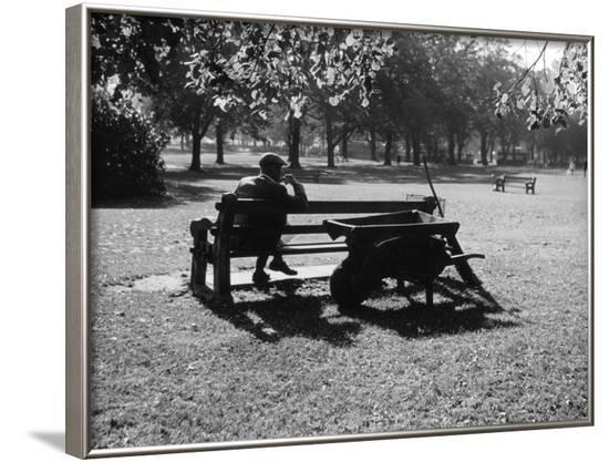 Autumn in the Park--Framed Photographic Print