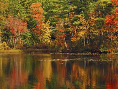 https://imgc.allpostersimages.com/img/posters/autumn-reflections-trickey-pond-naples-maine-usa_u-L-PHAHA10.jpg?p=0