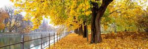 Autumn Scene Munich Germany