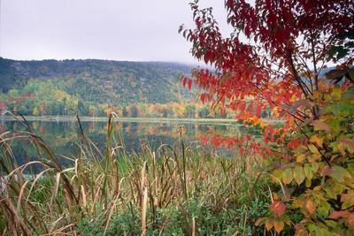 https://imgc.allpostersimages.com/img/posters/autumn-scenic-acadia-national-park-maine_u-L-Q1AT1K40.jpg?p=0