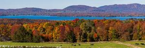 Autumn trees at lakeshore, Brome Lake, West Bolton, Quebec, Canada