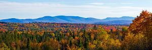 Autumn trees on landscape, Foster, Quebec, Canada