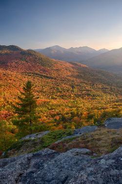 Autumn trees on mountain, Baxter Mountain, Adirondack Mountains State Park, New York State, USA