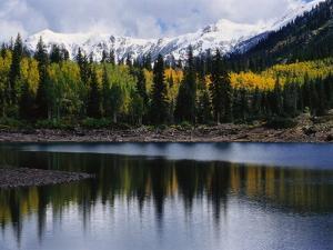 Autumn Trees on Mountain Lake