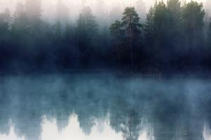 Autumn with Mirrored Pine Forest and Misty Northern River. Fog Rises above the Water at Dawn, Nasce