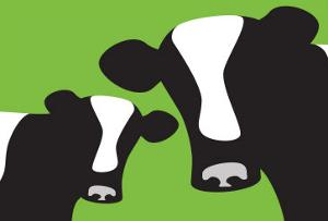 Green Cows by Avalisa